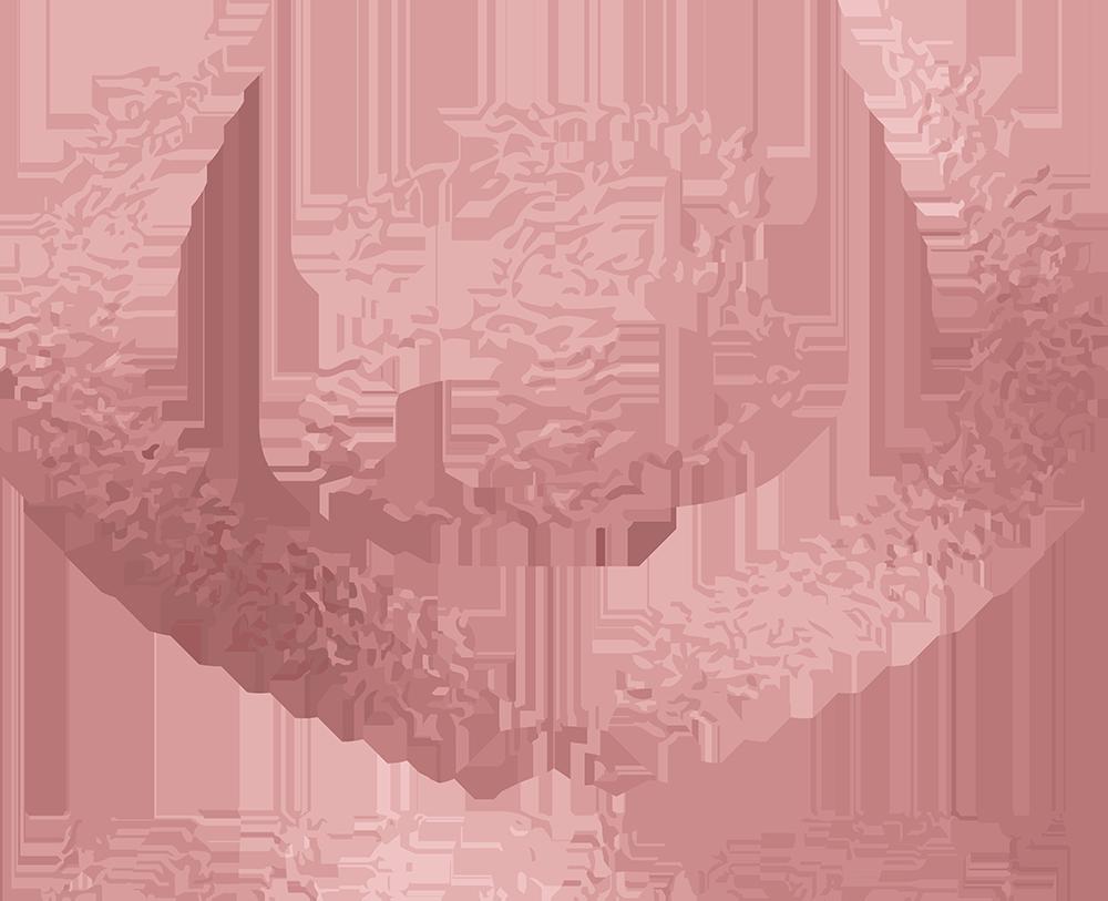 BareBeautyLogo